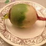 Технология возделывания корнеплодов