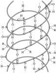 vtorichnaya-struktura-belka
